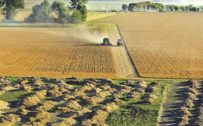 La récolte du soja près de Rojas (Argentine)