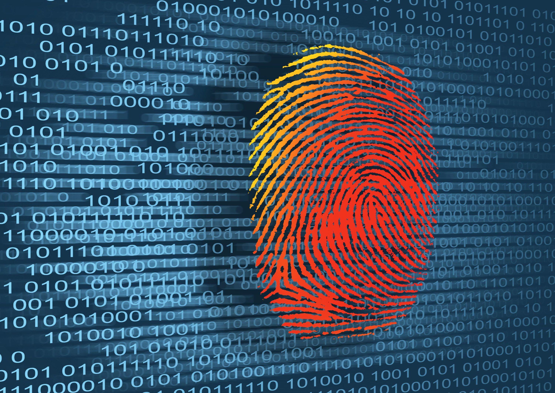 Sur les traces de notre identité numérique