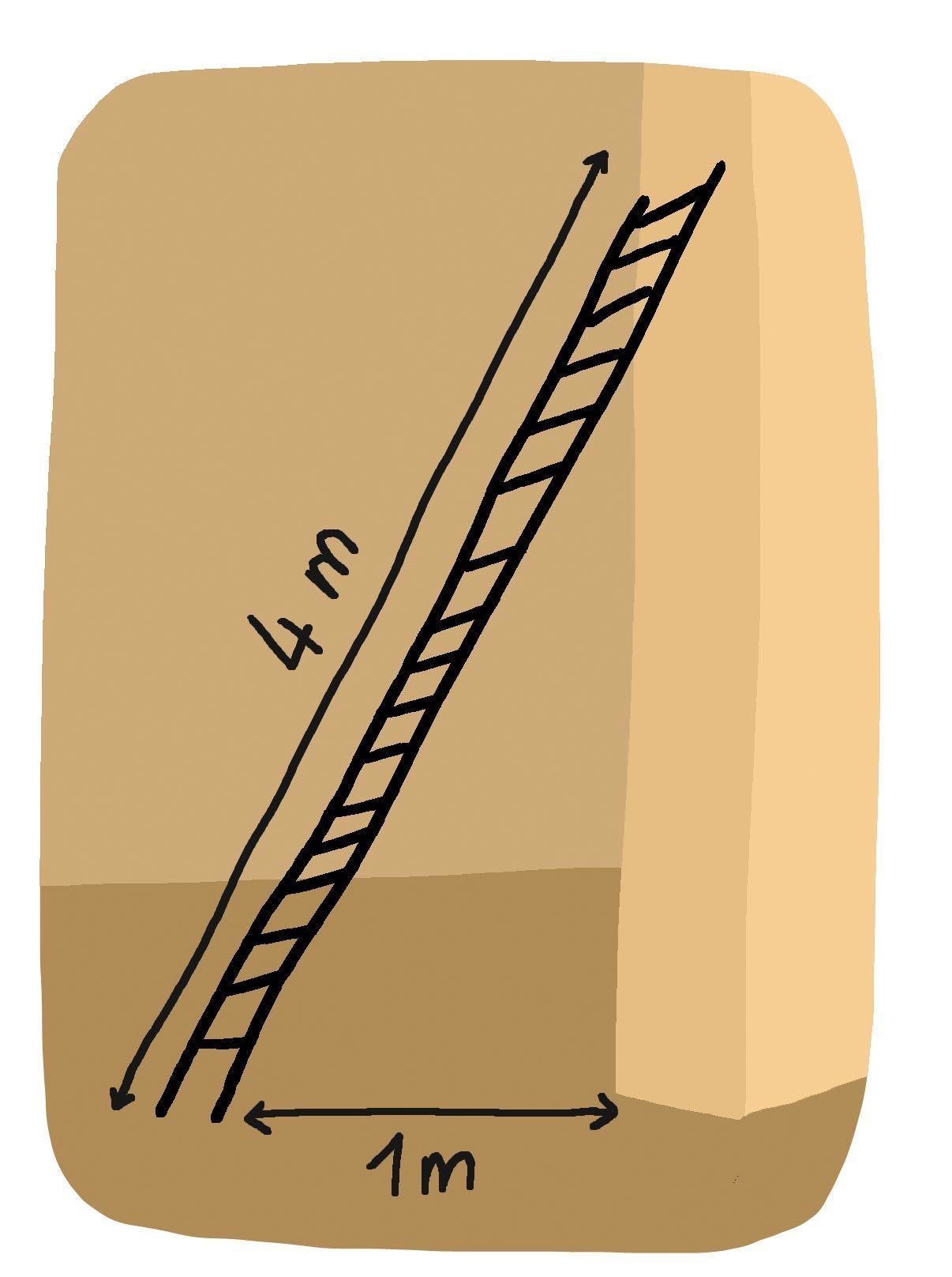 À quelle hauteur l'échelle touche-t-elle le mur ? (Donnez un arrondi au cm.)