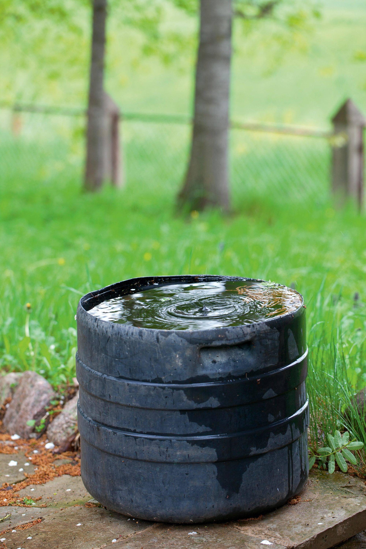 Récolte de l'eau de pluie.