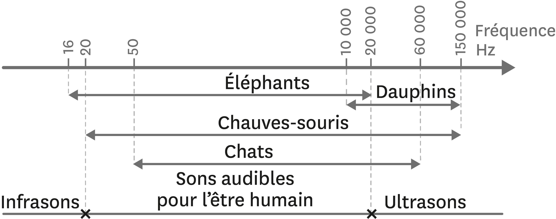 Des domaines audibles différents selon l'espèce.