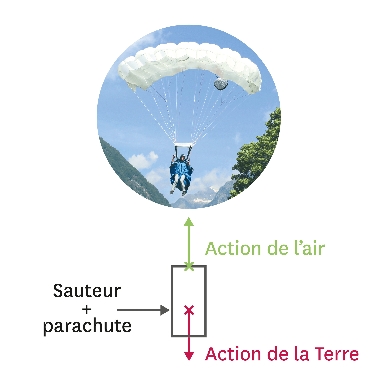 Modélisation des actions subies par le système « sauteur + parachute ».