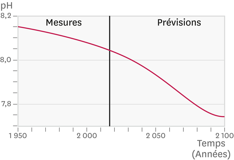 Courbe de prévision du pH océanique.