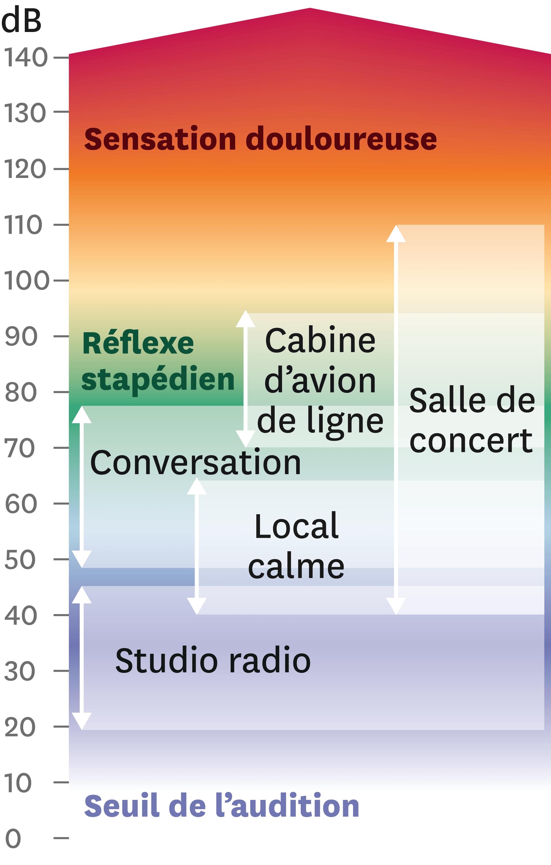 Échelle des niveaux sonores en dB.