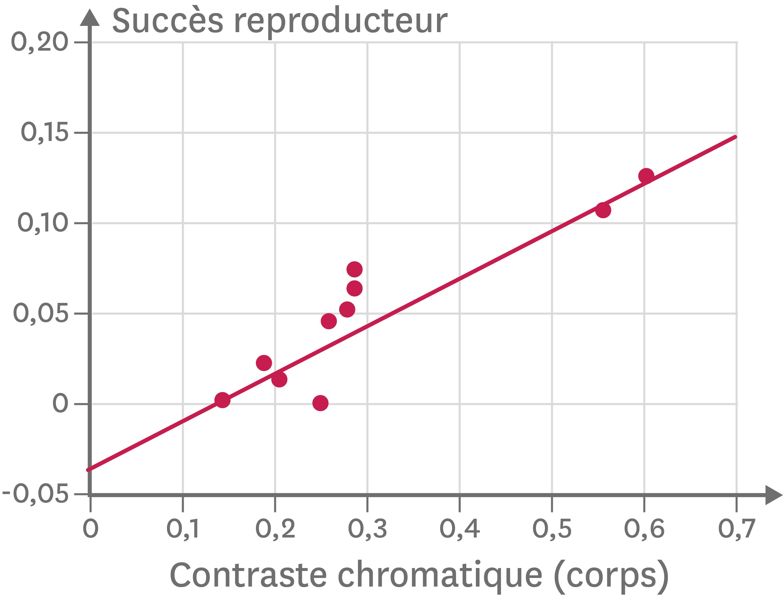 La relation entre la capacité à se reproduire et la visibilité des guppies mâles dans un environnement sans prédateur.