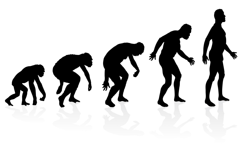 Une autre conception fausse de l'évolution.