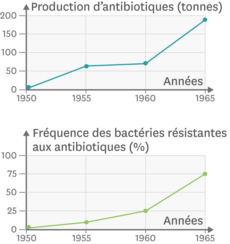 Les antibiotiques et la multirésistance des bactéries au Japon depuis 1950.