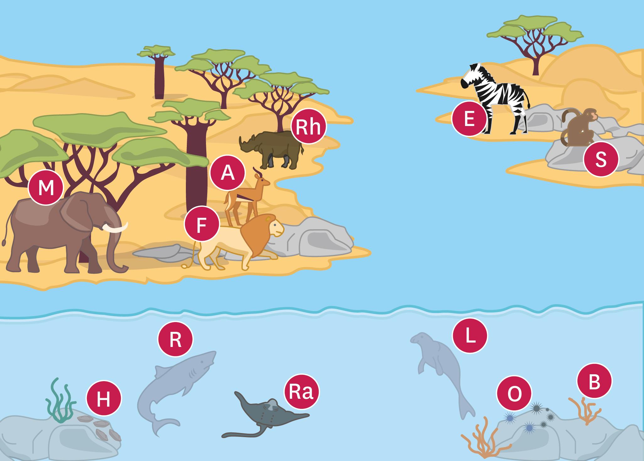Une reconstitution du paysage de l'Ouest de la France au Miocène (-23 à -5 millions d'années).