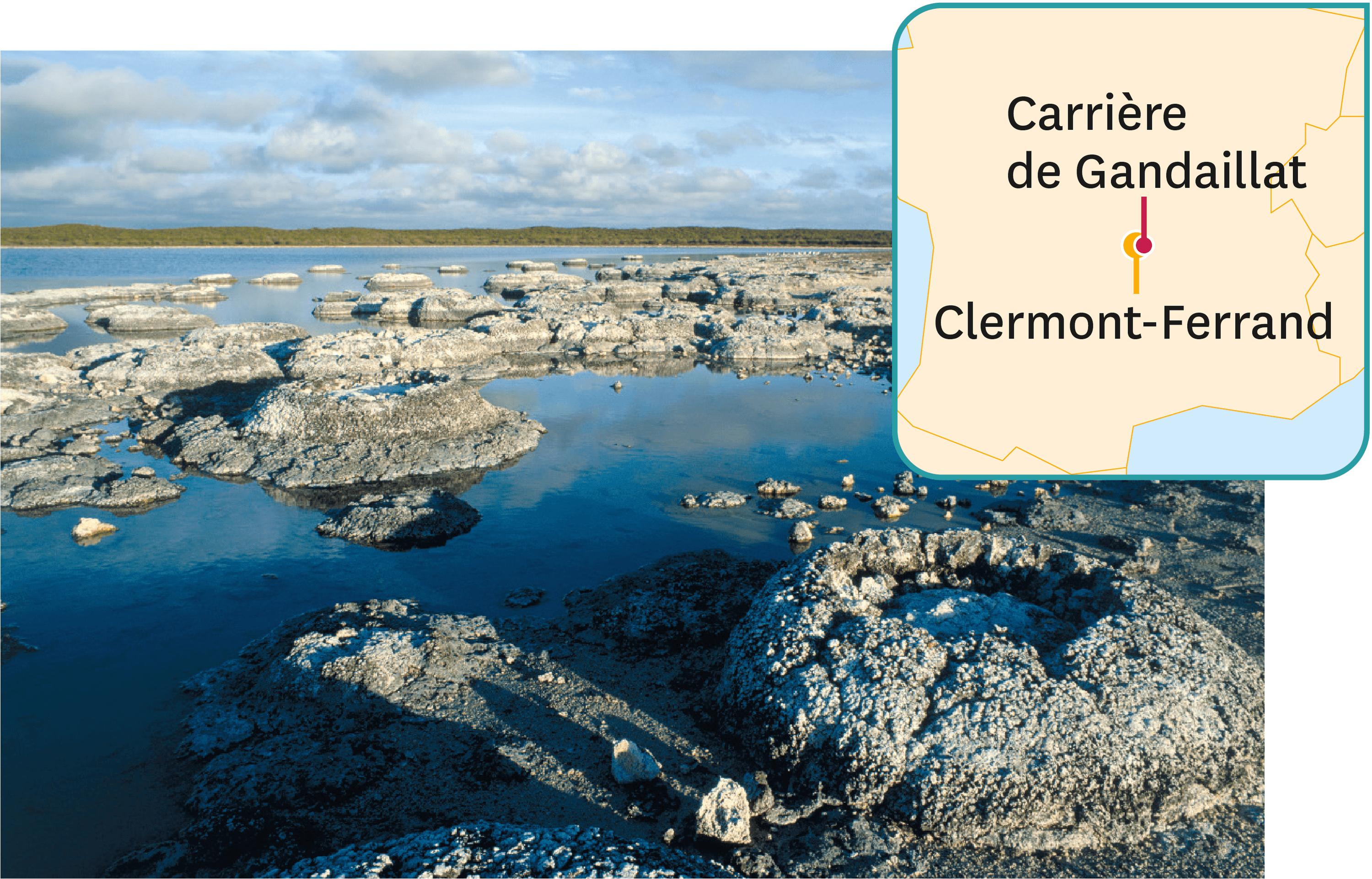 Une reconsitution de la région de Gandaillat, il y a 33 millions d'années.