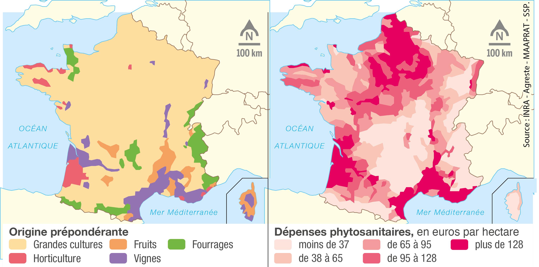 L'utilisation des produits phytosanitaires en France durant les années 2000.
