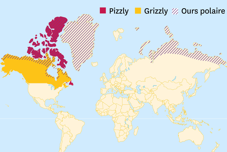 La carte de répartition des trois espèces.