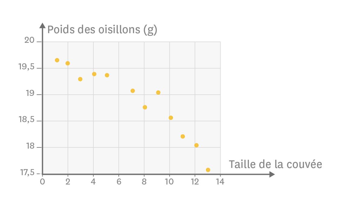 Relation entre la taille de la couvée et le poids des oisillons chez la mésange (Parus major).
