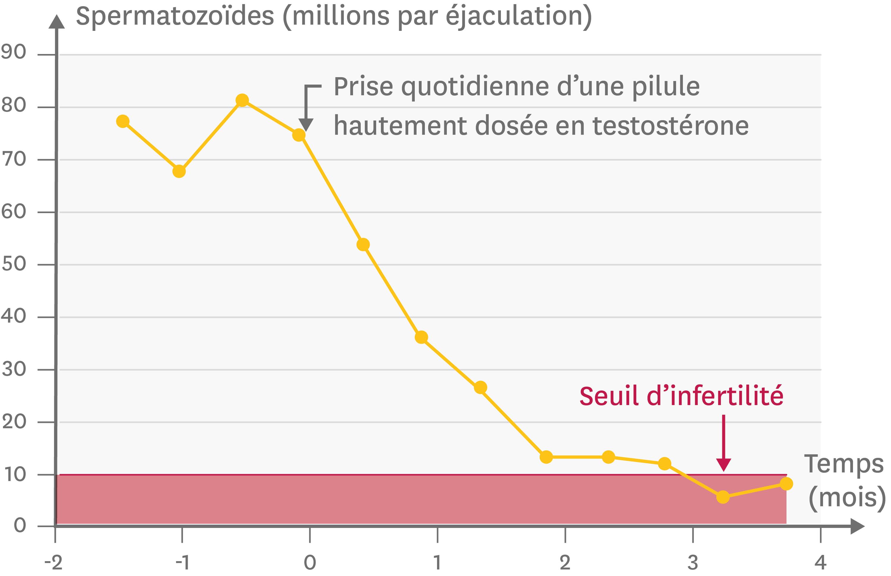 Un effet de la pilule contraceptive sur la production de spermatozoïdes.