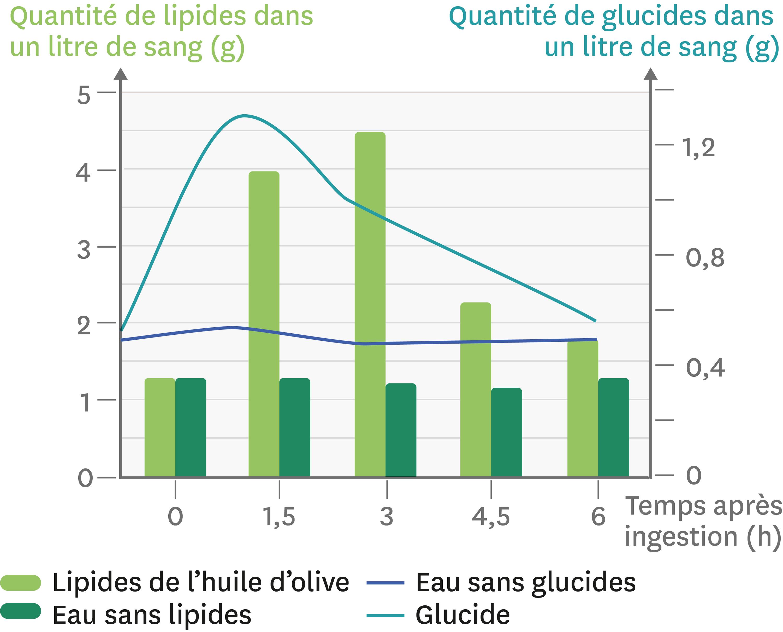 La quantité de lipides et de glucides dans le sang sortant de l'intestin grêle de porc après ingestion d'aliments.