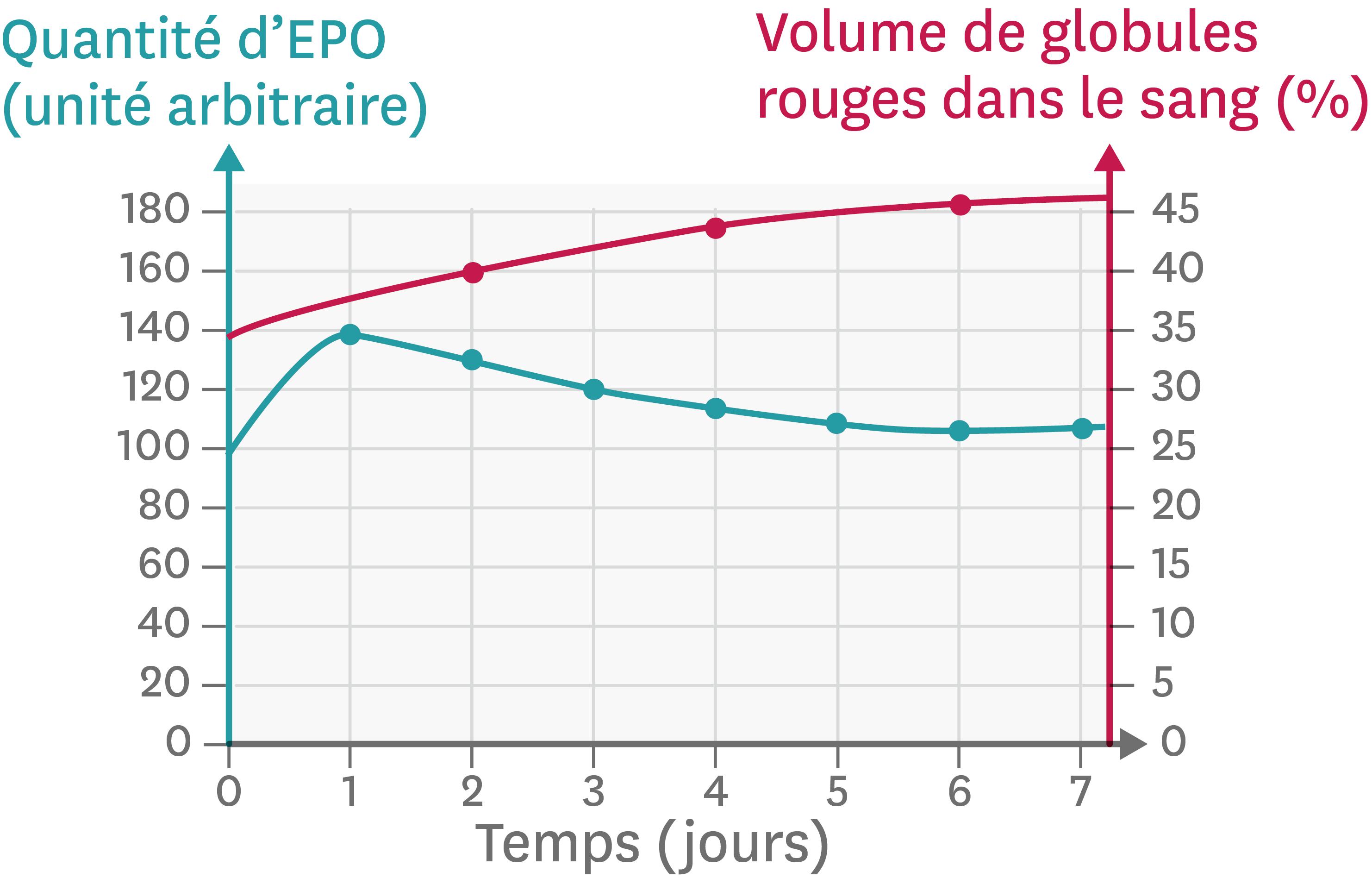 Les effets d'un séjour en haute altitude sur l'organisme.