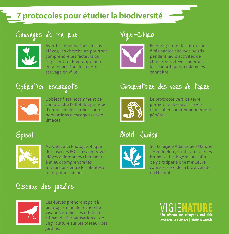 Sept protocoles pour étudier la biodiversité proposés par le réseau Vigie-Nature.
