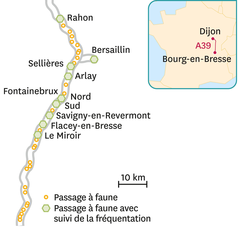 La localisation des passages à faune sur l'autoroute A39.