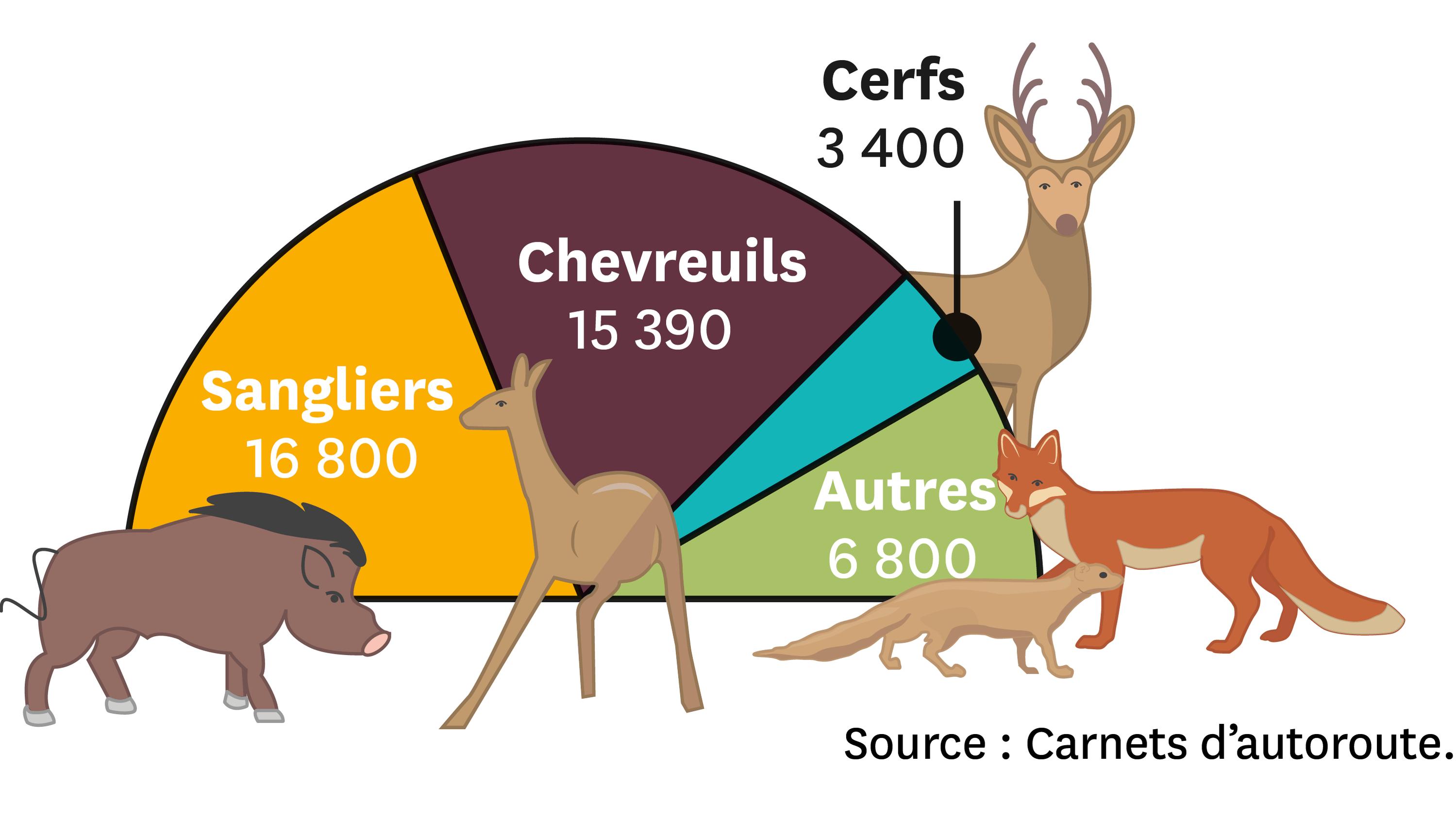 Les collisions recensées entre des automobilistes et la faune locale sur l'autoroute en France en 2008.
