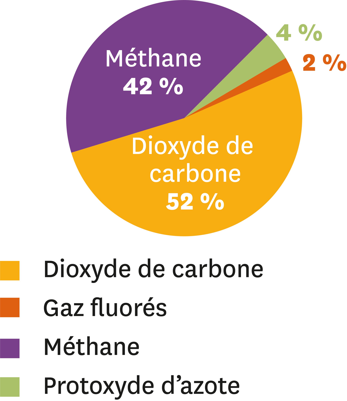 Les émissions mondiales des gaz à effet de serre issues des activités humaines en 2010.