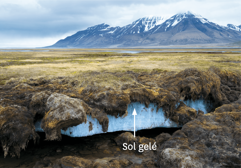Le permafrost.