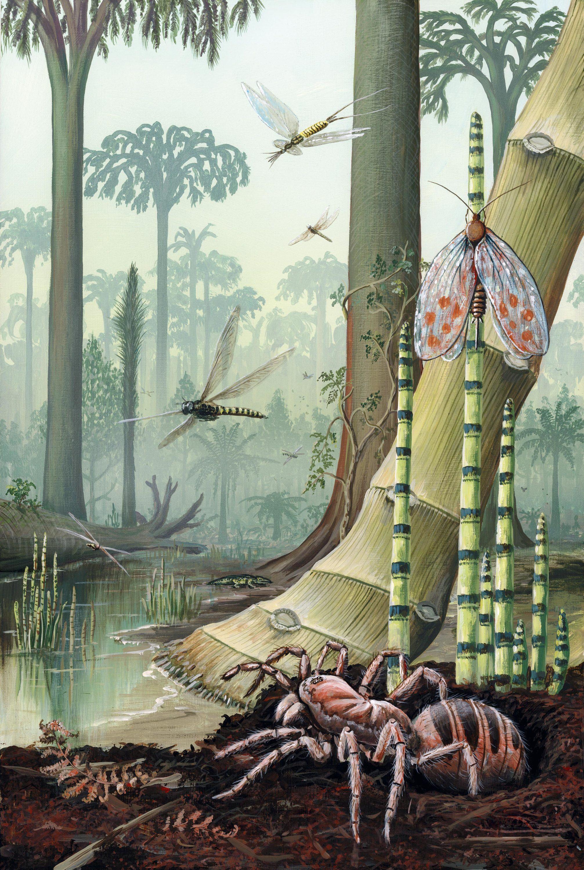 Un paysage de forêt tropicale humide reconstitué d'après les fossiles retrouvés.