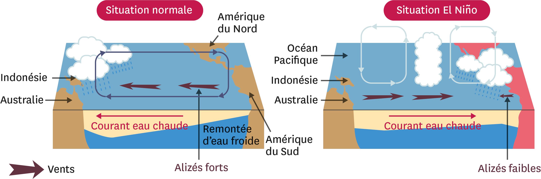 La comparaison entre une situation normale dans le Pacifique tropical et une situation El Niño.