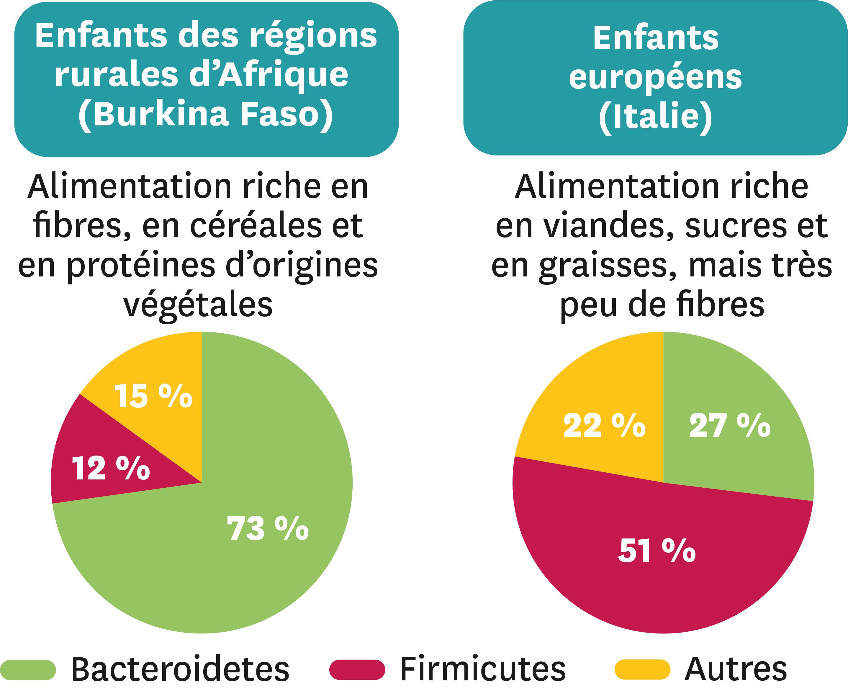 Une comparaison des bactéries du tube digestif d'enfants en fonction de leur alimentation générale.