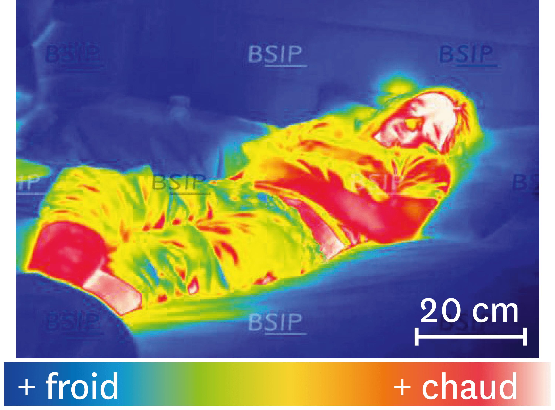 Une thermographie de l'organisme pendant la nuit.